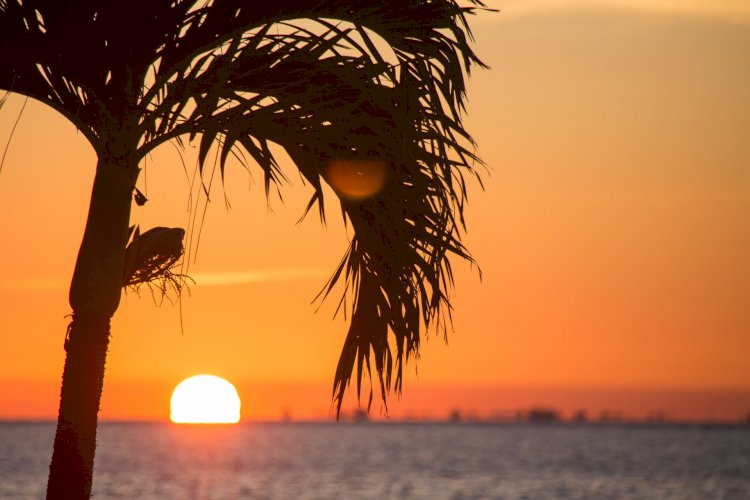BEST PLACES TO BUY A BEACH HOUSE IN FLORIDA