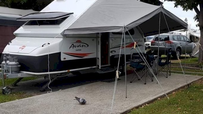 Family Caravan Trips Are Enjoyable & Filled with Adventure